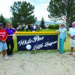 little league donation