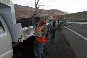 A road crew in Pleasant Valley remove tree limbs from the roadway. Obstacles like this can be common on rural roads and can be deadly if drivers are distracted. (Courtesy photo)