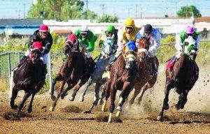 Horses round the corner during the White Pine County Horse Races at the White Pine County Fairgrounds on Saturday. (Battle Born Media photo)
