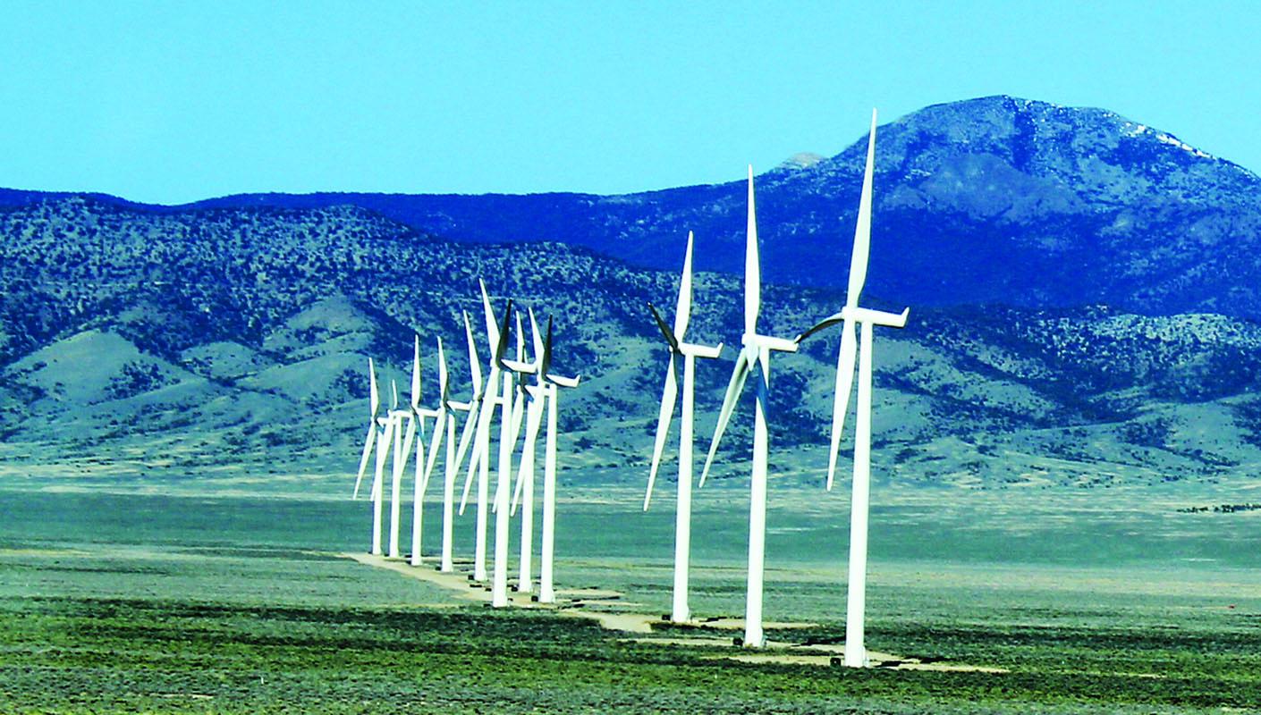 Bat deaths down at wind farm