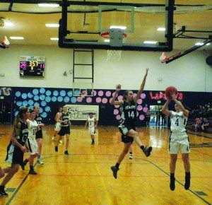 A player from Meadows attempts to block a shot by White Pine's Ashlyn Huntington in the Ladycat's 53-18 home win on Dec. 19. (Garrett Estrada photo)