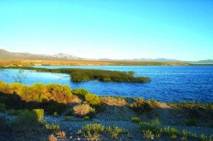 (Courtesy photo) Visitation to Comins Lake has dropped since pike have hurt its natural ecosystem.
