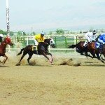 County Fair and Horse Races see increase in attendance
