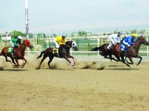 (Garrett Estrada photos) The horse races generated an average prize purse of over $6,000 per race thanks to the event's sponors.