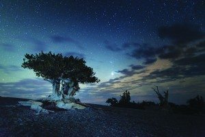 (Courtesy photo) The constellations can be clearly seen in the dark night skies above the Great Basin National Park.