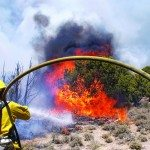 BLM Ely District to accept applications for temporary seasonal firefighters