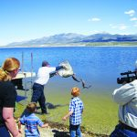 Comins Lake gets new trout population