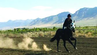 County Fair, horse races on tap for busy weekend