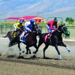 Horse races highlight fair activities