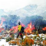 Rain dampens BLM burn plans