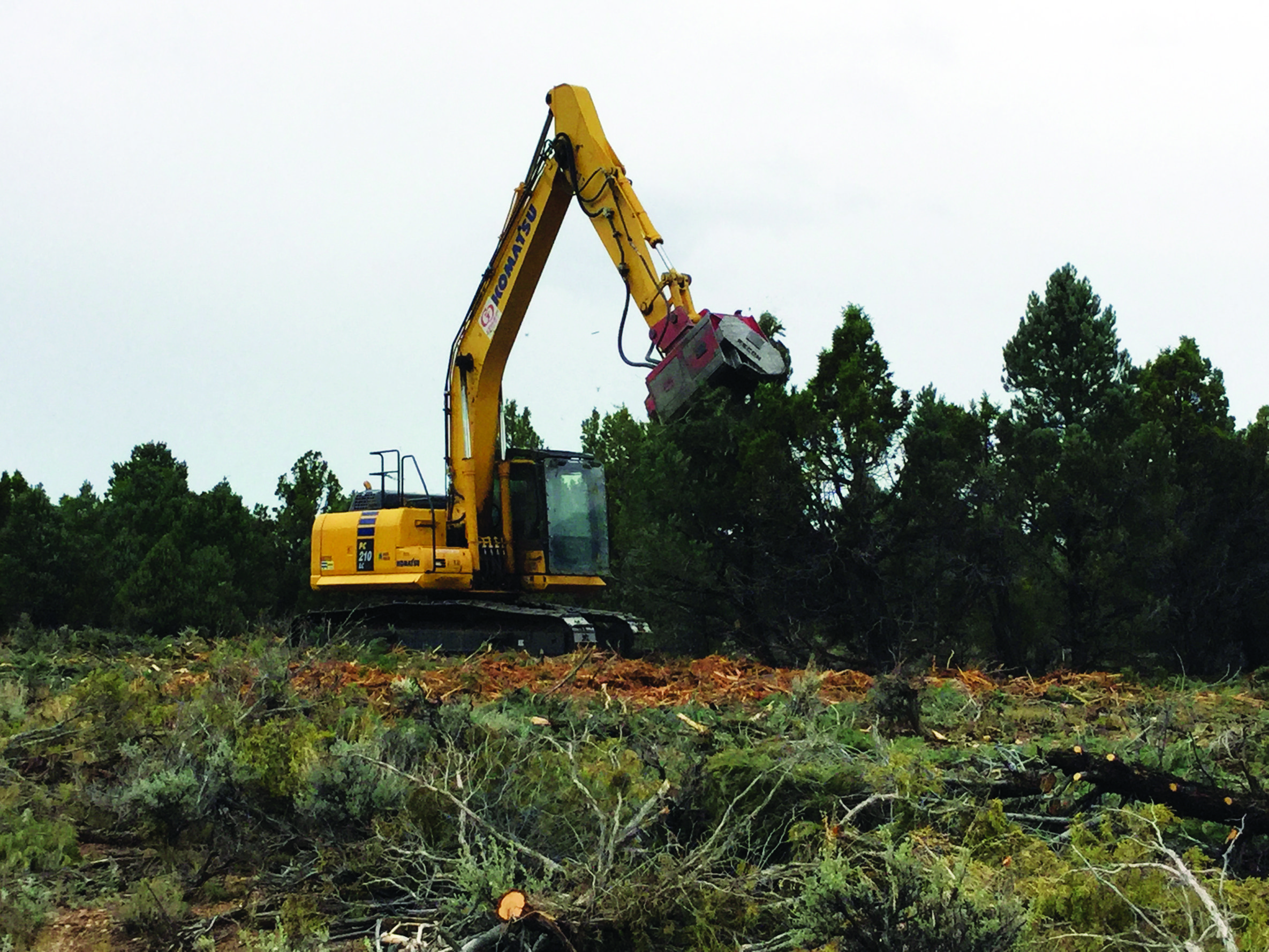 Wildfire risk factors being removed