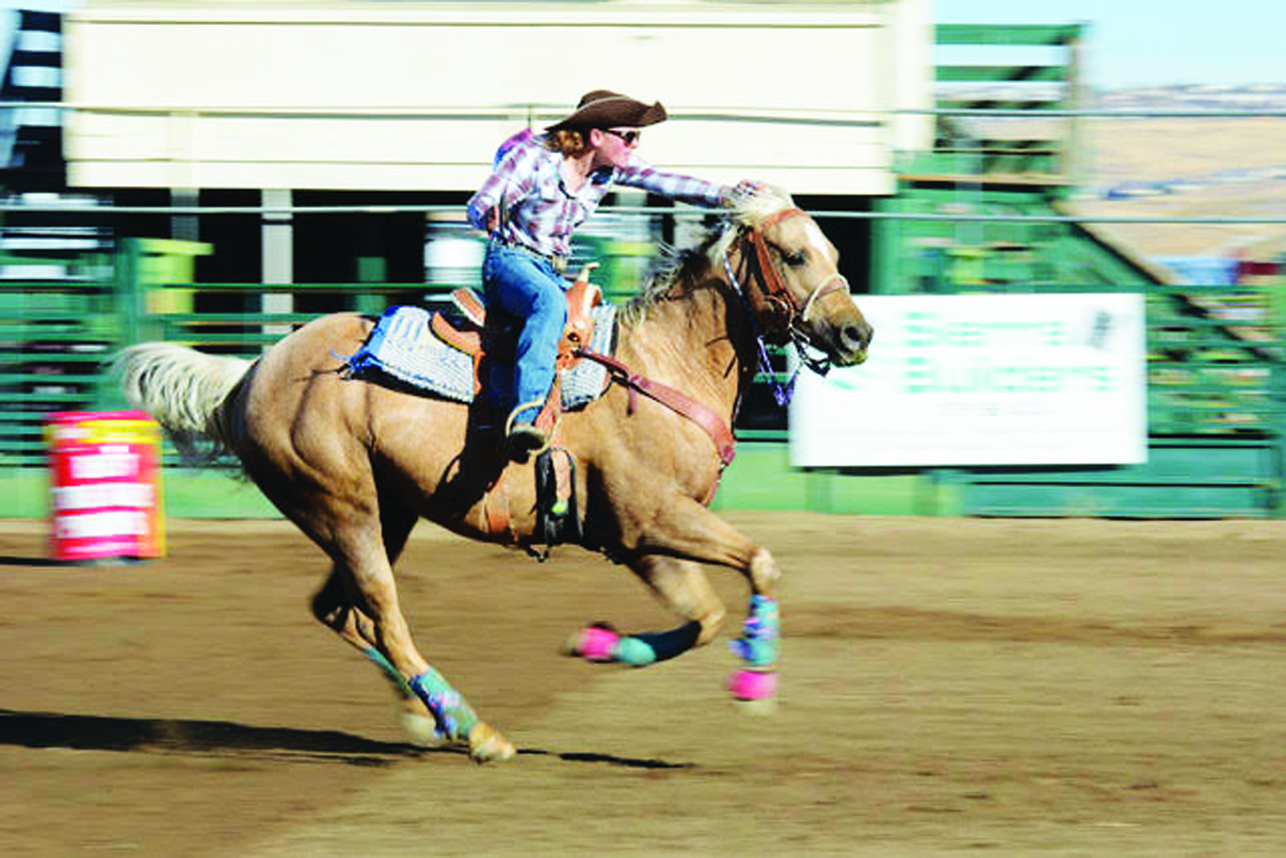 White Pine Jr. and High School Rodeo Club