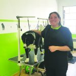 Dog grooming now open on Murry Street