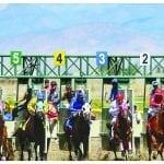 Fair, horse races on tap