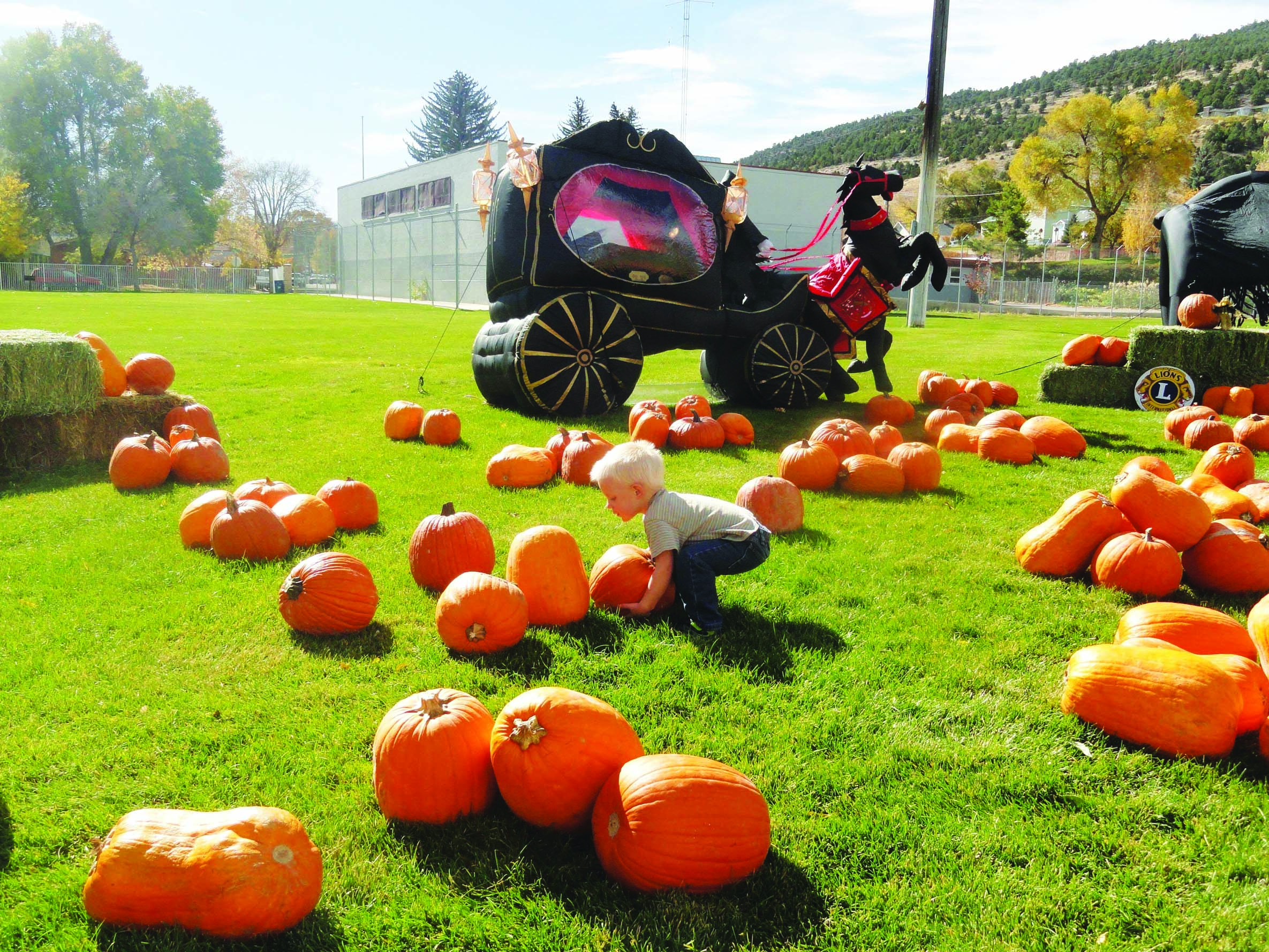 Punkin' Chunkin' returns on Saturday