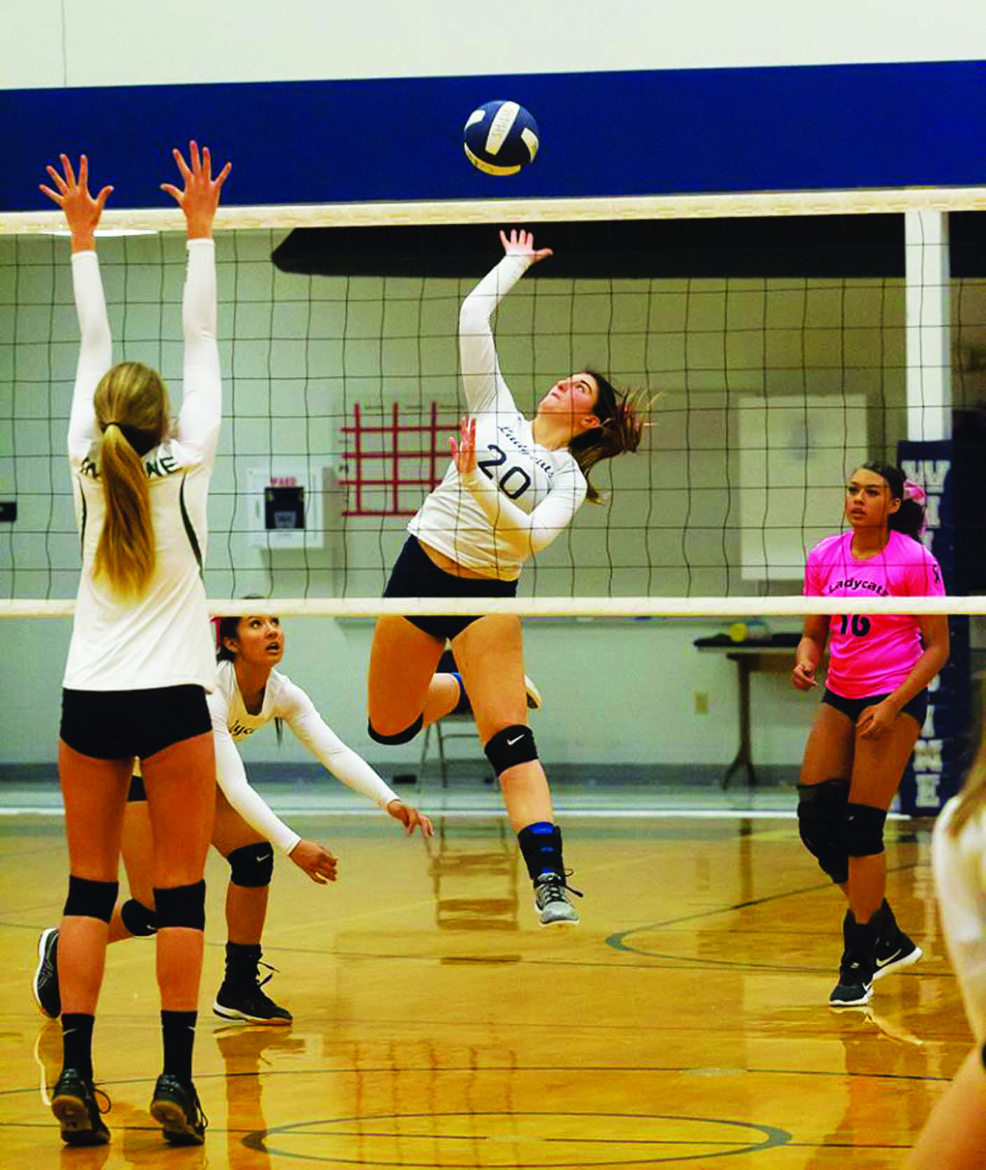 Ladycats in third place after split matches