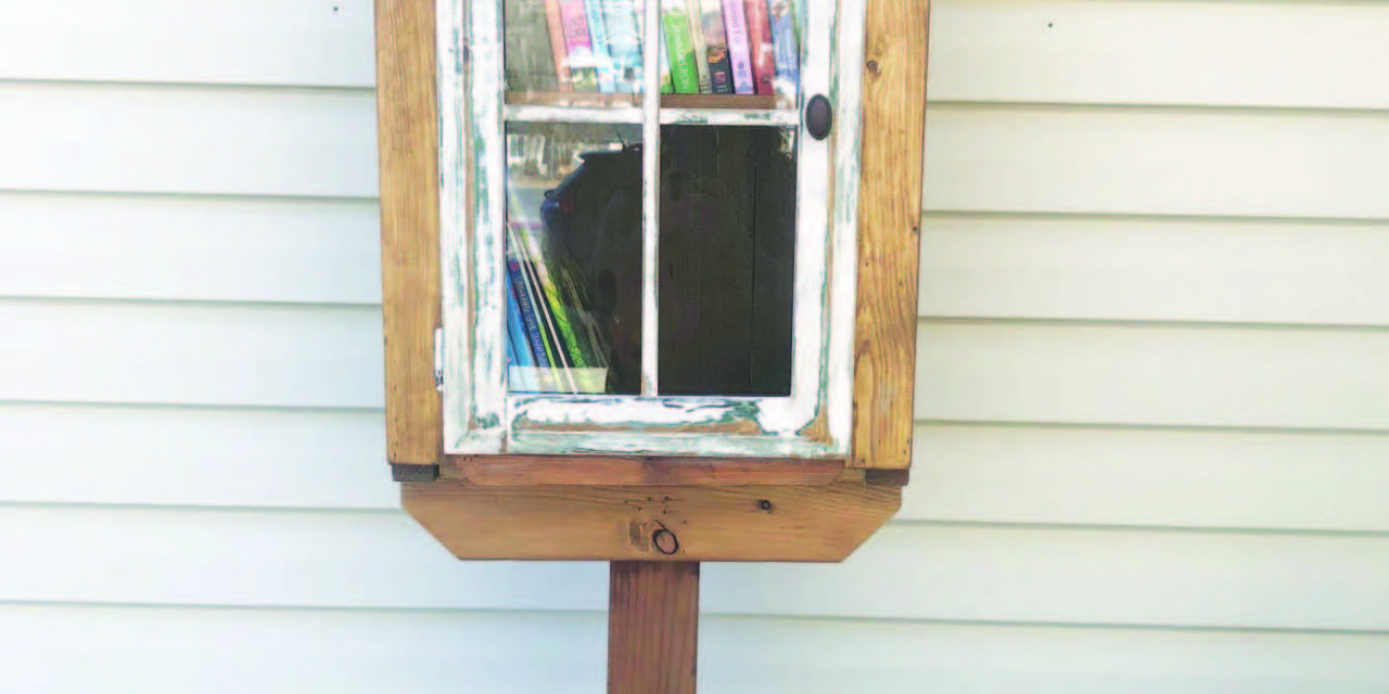 Little Free Library opens in White Pine County