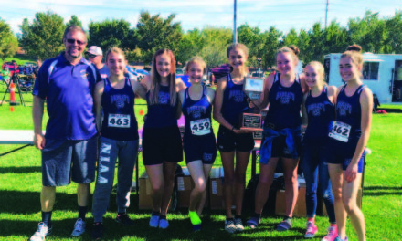 Ladycats cross country takes second at state