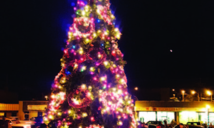 Christmas Tree lighting slated Saturday at Sculpture Park