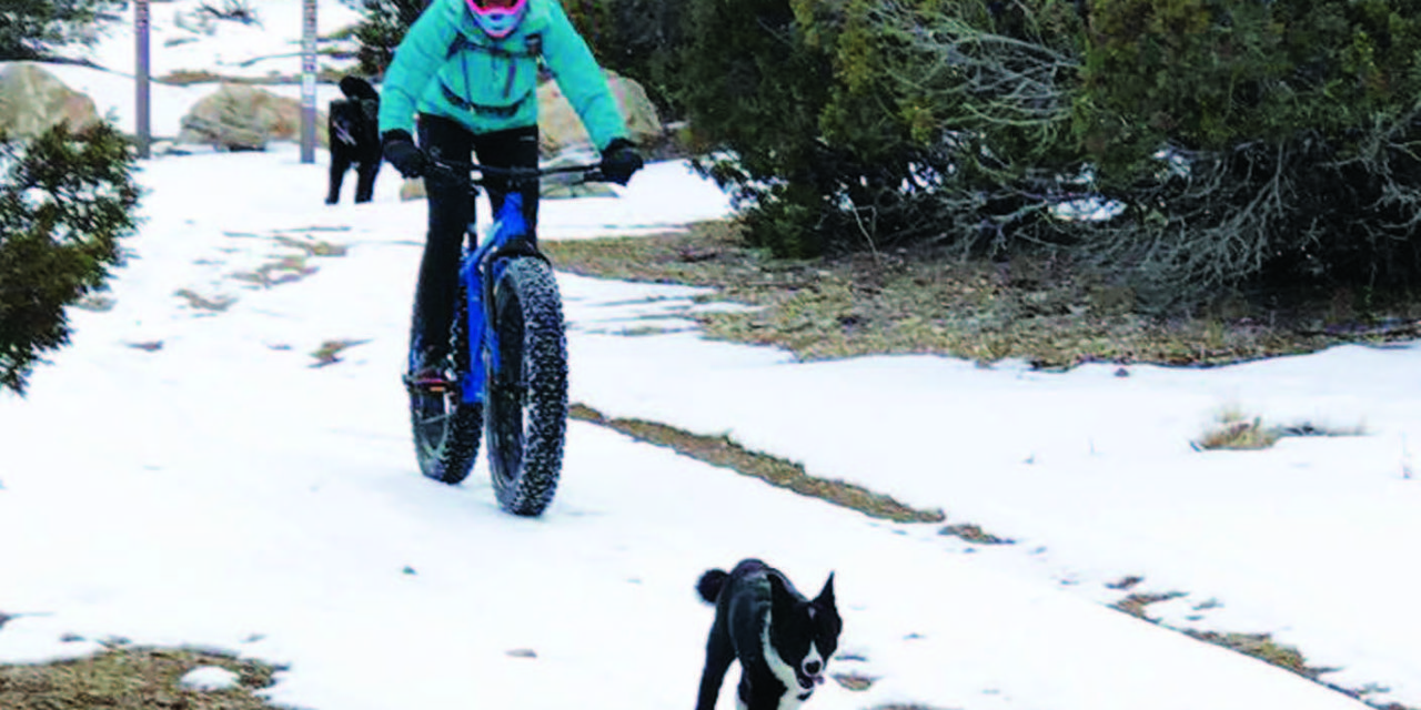 Fat tire biking popular