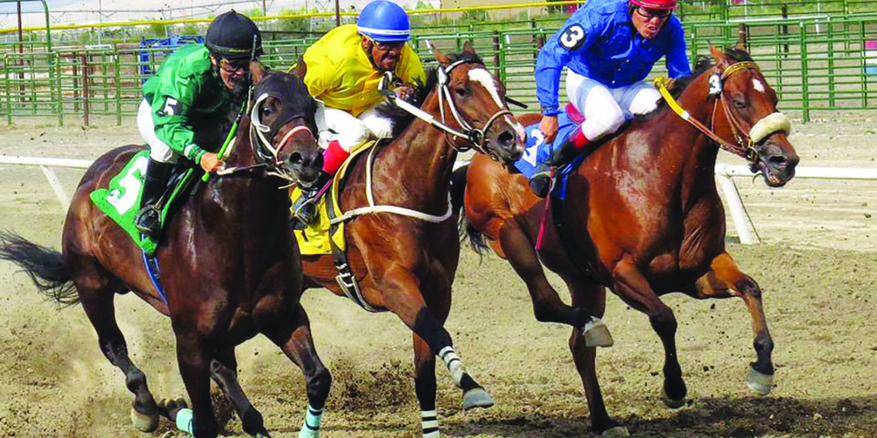 Board commits to continuing horse races during fair this year