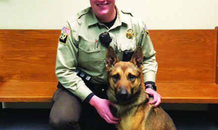 New dog added to  sheriff's office