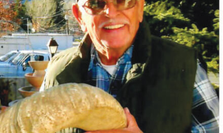 Jose C. Valdez