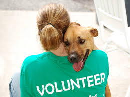 Volunteers needed for Ely Animal Shelter