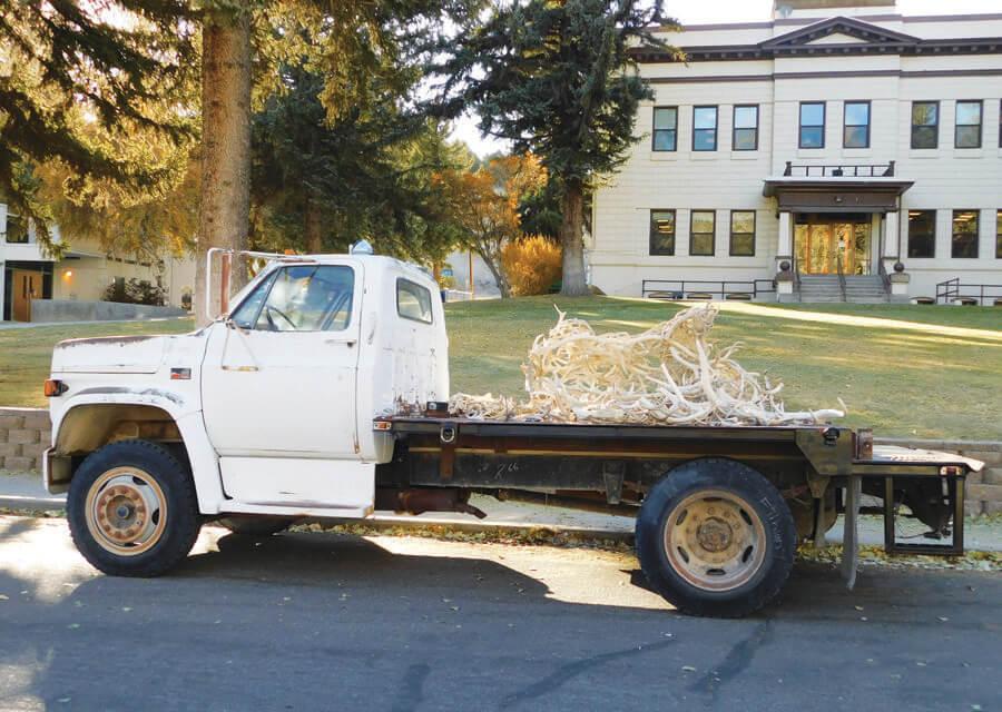 Elk artwork destroyed by vandals