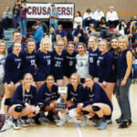 Ladycats runner up at state volleyball championships