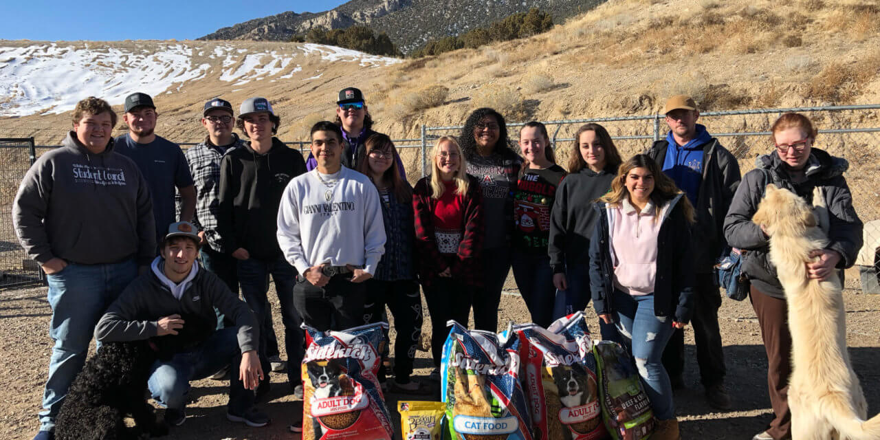 Students volunteer at animal shelter