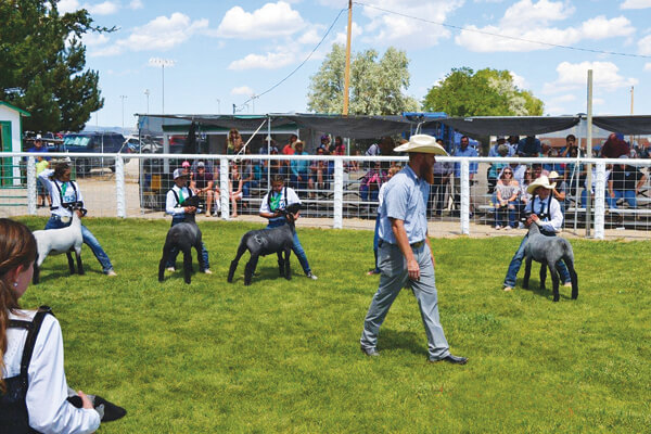 Livestock conference slated for Ely
