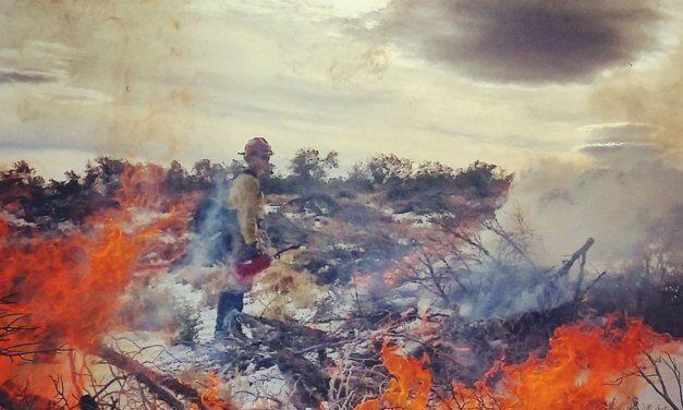 Scheduled Slash Pile Burn this week